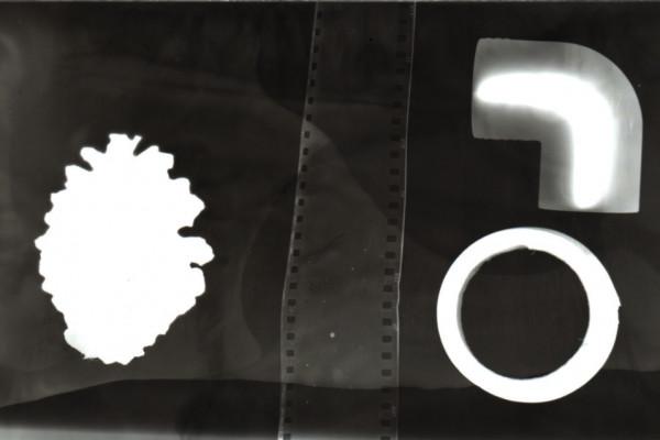 rayograma3E89B1206-E782-10B1-3BB6-D68C9CA330A4.jpg